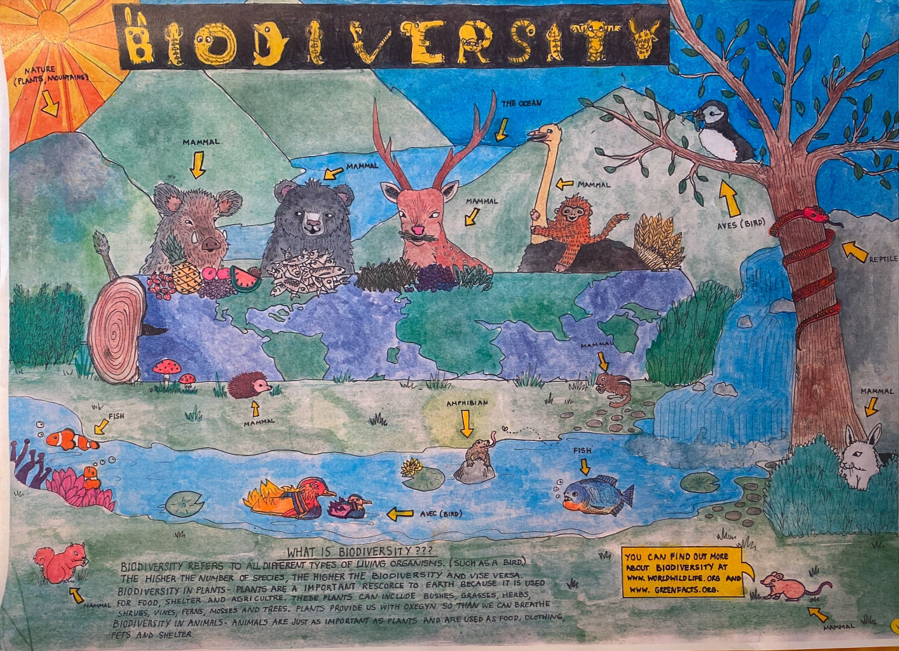 A poster titled Biodiversity. It is a mountainous landscape populated by a variety of animals.